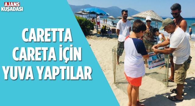 Kuşadası'nda Caretta Caretta Plaja Yuva Yaptı