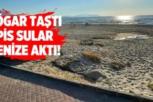 Kuşadası Sahilinde İnanılmaz Görüntü!