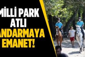 Milli Parkta Koylar Atlı Jandarmaya Emanet!